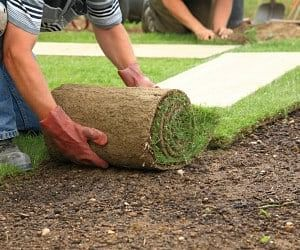 Landscaping Insurance Cost Coverage 2021